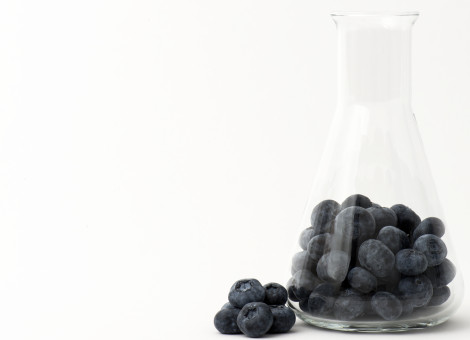 Blueberry in test tube representing blueberry  usage in the cosmetic industry